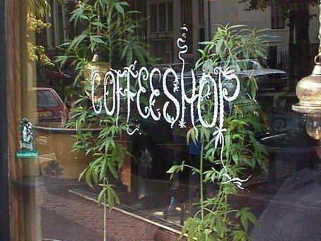 cannabis-coffee-shop